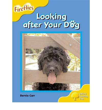 Oxford Reading Tree: Level 5: Fireflies: Looking After Your Dog