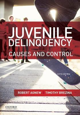 an overview of the possible causes of juvenile delinquency A new analysis of crime stats suggests that economics trumps biology in causing  violent behavior in teenagers.