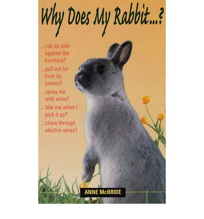Why Does My Rabbit...?