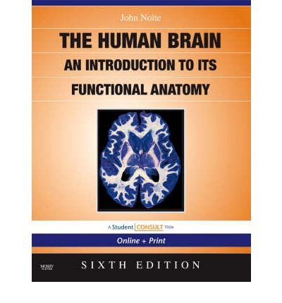 The Nolte's the Human Brain : An Introduction to its Functional Anatomy