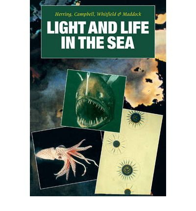 Light and Life in the Sea