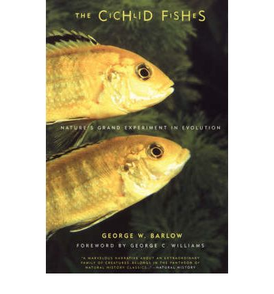 The Cichlid Fishes