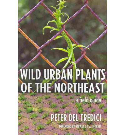Wild Urban Plants of the Northeast : A Field Guide