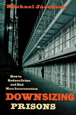 Essay on downsizing prisons