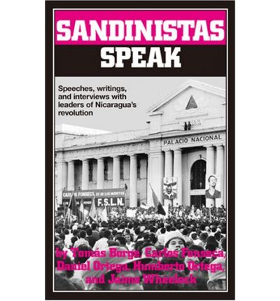 nicaragua and the sandinistas essay Free essay: the argument in question was over the nature of the revolution in nicaragua, and the political motivations of the sandinistas i said that the.