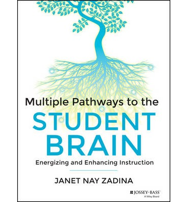 Multiple Pathways to the Student Brain : Energizing and Enhancing Instruction