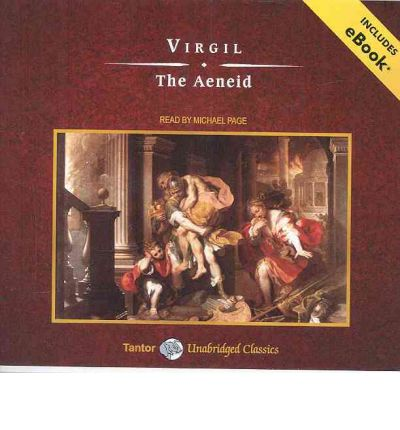 the aenid The aeneid is entirely distinctive, of personal and literary rather than popular and oral origins, a cornerstone of not just culture but also of calculated art ferry conveys its power even more than its majesty.