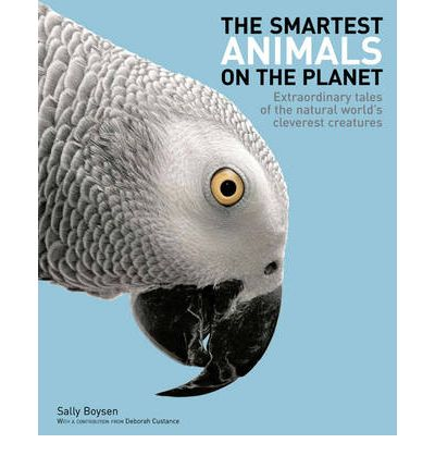 The Smartest Animals on the Planet : Extraordinary Tales of the Natural World's Cleverest Creatures
