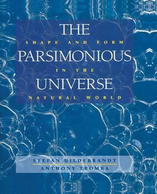 The Parsimonious Universe : Shape and Form in the Natural World