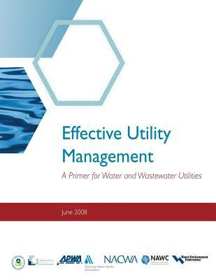 Good books to download on iphone Effective Utility Management : A Primer for Water and Wastewater Utilities by Environmental Protection Agency PDF CHM 9781475060683