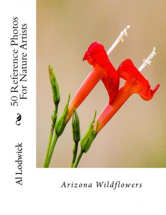 Arizona Wildflowers : 50 Reference Photos for Nature Artists