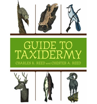 The Complete Guide to Traditional Taxidermy