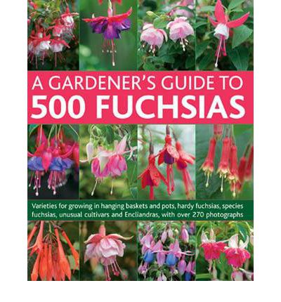 A Gardener's Guide to 500 Fuchsias: Varieties for Growing in Hanging Baskets and Pots, Hardy Fuschias, Species, Unusual Cultivars and Encliandras, with Over 270 Photographs