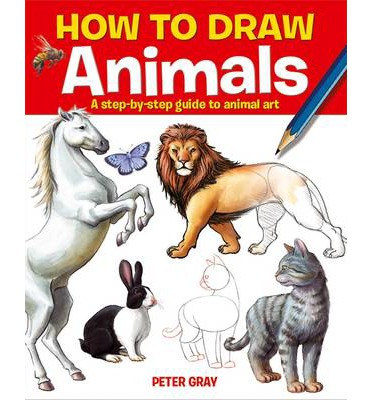 how to draw animals step by step book