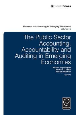 What Is Public Sector Accounting?