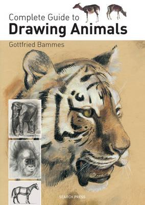 Complete Guide to Drawing Animals