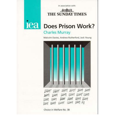 The prisons do they work essay