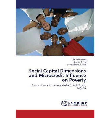 Social Capital Dimensions and Microcredit Influence on Poverty