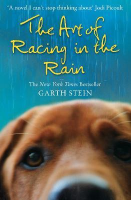 The Art of Racing in the Rain (Paperback)
