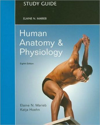 How to study for human anatomy