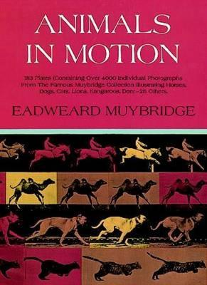 Animals in Motion (Paperback)