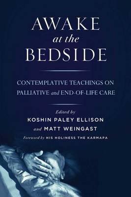 Awake at the Bedside (Paperback)