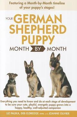 Your German Shepherd Puppy Month by Month