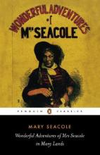 The Wonderful Adventures of Mrs Seacole in Many Lands
