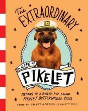 The Extraordinary Life of Pikelet
