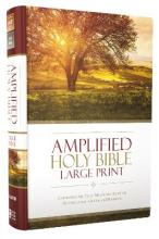 Amplified, Holy Bible
