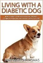 Living with a Diabetic Dog