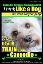 Cavoodle, Cavoodle Training AAA Akc