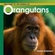 Welcome to the World Orangutans