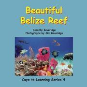 Beautiful Belize Reef