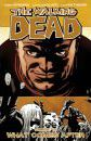 The Walking Dead: Volume 18: What Comes After
