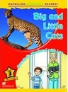 Macmillan Children's Readers - Big and Little Cats - Grandads Weekend with Leo - Level 3