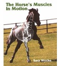 The Horse's Muscles in Motion